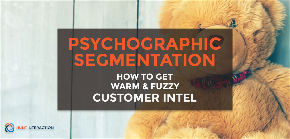 Psychographic-Segmentation-Get-Customer-Intel-Feature